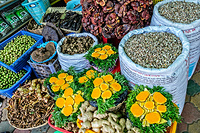 Traditional medicine market